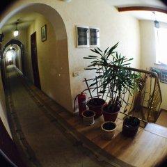 Гостиница Кривитеск питание фото 2