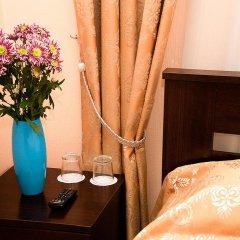 Гостиница Мини-отель Алёна в Санкт-Петербурге отзывы, цены и фото номеров - забронировать гостиницу Мини-отель Алёна онлайн Санкт-Петербург удобства в номере фото 2