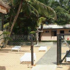 Отель Thiranagama Beach Hotel Шри-Ланка, Хиккадува - отзывы, цены и фото номеров - забронировать отель Thiranagama Beach Hotel онлайн фото 2