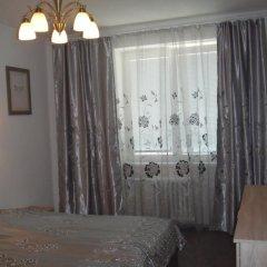 Отель Apartman Sofije Чехия, Карловы Вары - отзывы, цены и фото номеров - забронировать отель Apartman Sofije онлайн удобства в номере фото 2