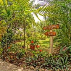 Отель Bourbon Beach Jamaica фото 6