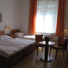 Hotel Jana / Pension Domov Mladeze Стандартный номер с различными типами кроватей (общая ванная комната) фото 3