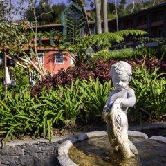 Отель Quinta do Monte Panoramic Gardens фото 5