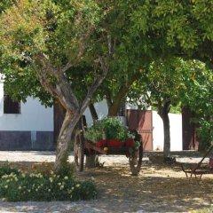 Отель Quinta De Tourais Ламего фото 10