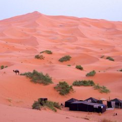 Отель Desert Berber Fire-Camp Марокко, Мерзуга - отзывы, цены и фото номеров - забронировать отель Desert Berber Fire-Camp онлайн приотельная территория