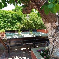 Отель Babis Studios Греция, Аргасио - отзывы, цены и фото номеров - забронировать отель Babis Studios онлайн фото 19