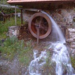 Гостиница Cottage v Gorakh Украина, Поляна - отзывы, цены и фото номеров - забронировать гостиницу Cottage v Gorakh онлайн бассейн