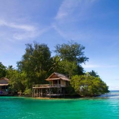 Oravae Island Cottages in Kukundu, Solomon Islands from 297$, photos, reviews - zenhotels.com beach photo 2