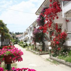 Отель Villa Reppas Греция, Пефкохори - отзывы, цены и фото номеров - забронировать отель Villa Reppas онлайн фото 3