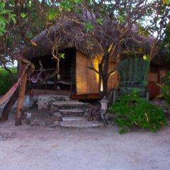 Отель Green Lodge Moorea Французская Полинезия, Папеэте - отзывы, цены и фото номеров - забронировать отель Green Lodge Moorea онлайн фото 4