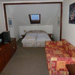 Отель Penzion Holiday комната для гостей фото 3