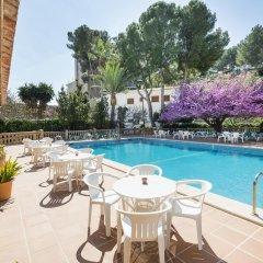 Hotel Gaya бассейн фото 2