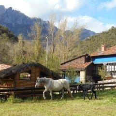 Отель Apartamentos Samelar Испания, Камалено - отзывы, цены и фото номеров - забронировать отель Apartamentos Samelar онлайн фото 9