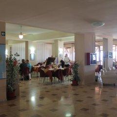 Отель South Paradise Италия, Пальми - отзывы, цены и фото номеров - забронировать отель South Paradise онлайн помещение для мероприятий фото 2