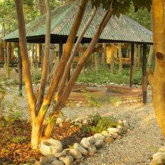 Отель Maruni Sanctuary by KGH Group Непал, Саураха - отзывы, цены и фото номеров - забронировать отель Maruni Sanctuary by KGH Group онлайн детские мероприятия фото 2