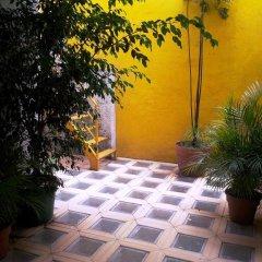 Отель Suites Polanco Anzures Мехико
