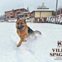 Отель Villa Spaggo Complex с домашними животными