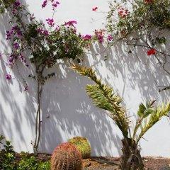 Отель Aparthotel Esquinzo Y Monte Del Mar фото 6