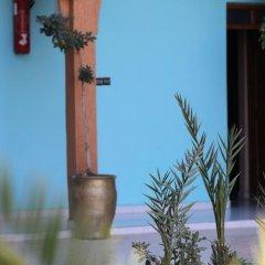 Отель La Vallée Марокко, Уарзазат - отзывы, цены и фото номеров - забронировать отель La Vallée онлайн фото 4