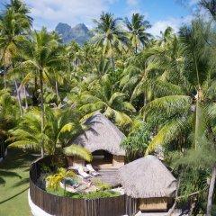 Отель Bora Bora Pearl Beach Resort and Spa Французская Полинезия, Бора-Бора - отзывы, цены и фото номеров - забронировать отель Bora Bora Pearl Beach Resort and Spa онлайн фото 5