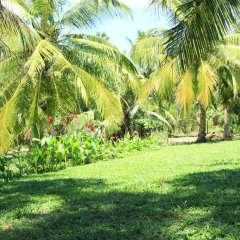 The Coconut Garden Hotel & Restaurant фото 7