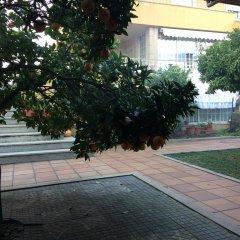 Отель Vivenda Fatinha парковка