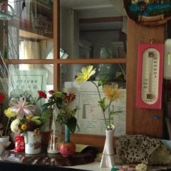 Отель Minshuku Nakaya Хакуба гостиничный бар