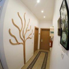 Отель Green Rooms интерьер отеля фото 2