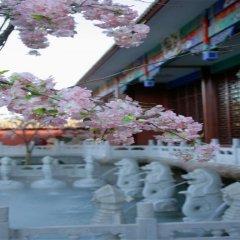 Отель Jiuhua Resort & Convention Center фото 2