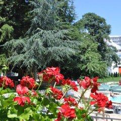 Hotel Gradina 3* Стандартный номер с различными типами кроватей фото 2