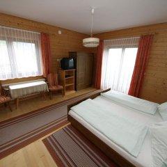 Отель Frühstückspension Kärntnerhof 3* Стандартный номер с различными типами кроватей фото 3