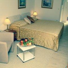 Hotel Vila Tina 3* Номер Делюкс с различными типами кроватей фото 12