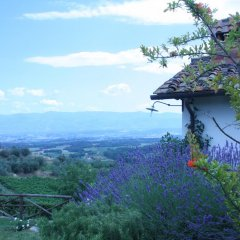 Отель La Tuia Vacanze Италия, Монтеварчи - отзывы, цены и фото номеров - забронировать отель La Tuia Vacanze онлайн балкон