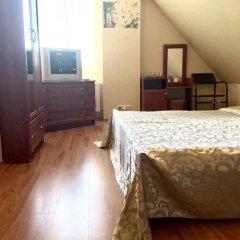 Гостевой дом Вилари 3* Стандартный номер разные типы кроватей фото 13