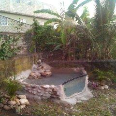 Отель Paradise Nest фото 3