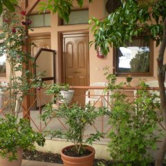 Отель Studios Ioanna Греция, Ситония - отзывы, цены и фото номеров - забронировать отель Studios Ioanna онлайн