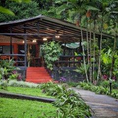 Отель Chachagua Rainforest Ecolodge фото 16