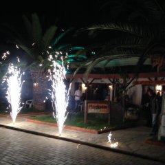 Medusa Camping Турция, Патара - отзывы, цены и фото номеров - забронировать отель Medusa Camping онлайн фото 9