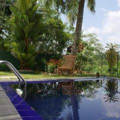 Отель Lanka Rose Guest House Шри-Ланка, Берувела - отзывы, цены и фото номеров - забронировать отель Lanka Rose Guest House онлайн бассейн