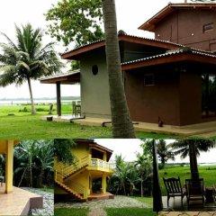 Отель Lake View Cottage Шри-Ланка, Тиссамахарама - отзывы, цены и фото номеров - забронировать отель Lake View Cottage онлайн фото 4