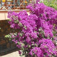 Hotel Olympos фото 4