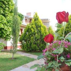 Отель El Olivo Аргентина, Сан-Рафаэль - отзывы, цены и фото номеров - забронировать отель El Olivo онлайн фото 4