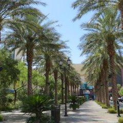 Отель El Cortez Hotel & Casino США, Лас-Вегас - 1 отзыв об отеле, цены и фото номеров - забронировать отель El Cortez Hotel & Casino онлайн фото 4