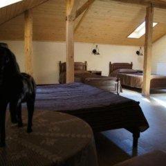 Milkana Hotel 3* Стандартный номер фото 9