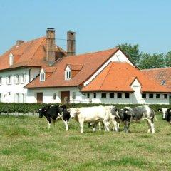 Отель Holiday Home De Colve с домашними животными