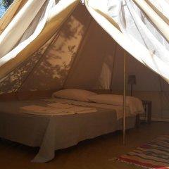 Отель Agricamping La Gallinella Кастаньето-Кардуччи комната для гостей фото 4