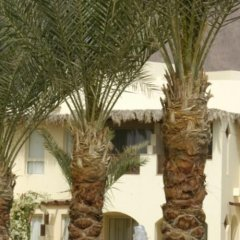 Отель Taba Paradise Resort