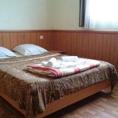 Гостевой дом София Стандартный номер с разными типами кроватей фото 2