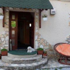 Отель Taltos Vendeghaz Венгрия, Силвашварад - отзывы, цены и фото номеров - забронировать отель Taltos Vendeghaz онлайн фото 2