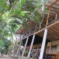 Отель Paradise by Dharma фото 22